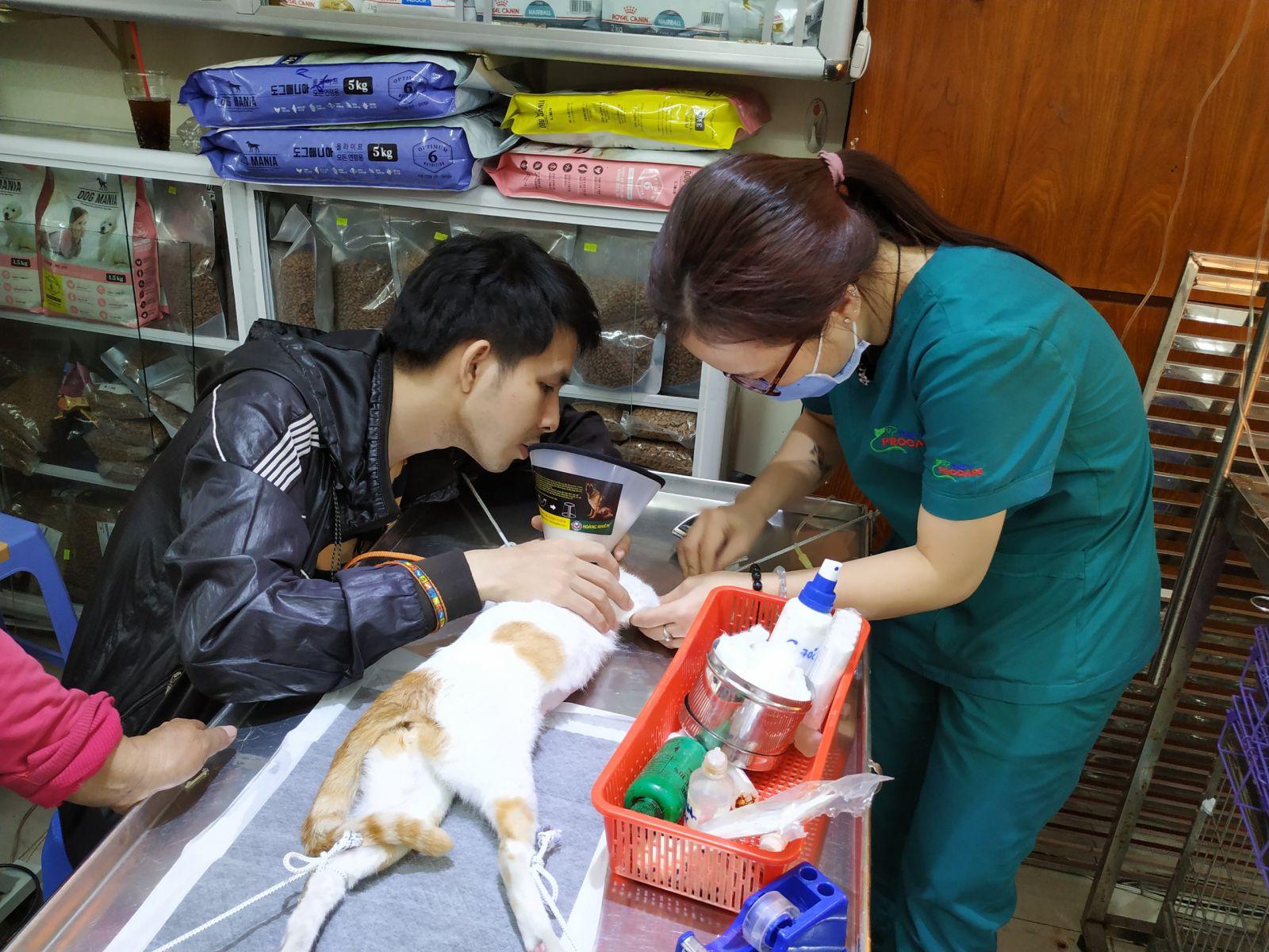 chăm sóc thú cưng Sài Gòn